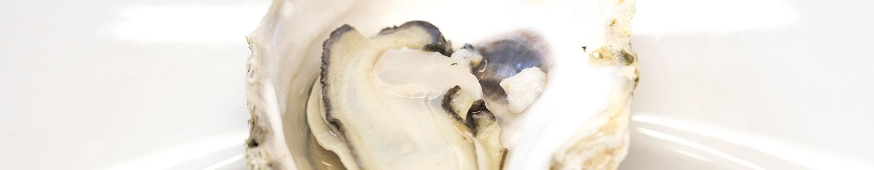 La ostra en l'Ampolla: jornadas gastronómicas