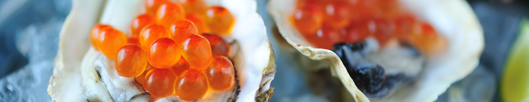 L'huître de l'Ampolla, un délice de fruits de mer