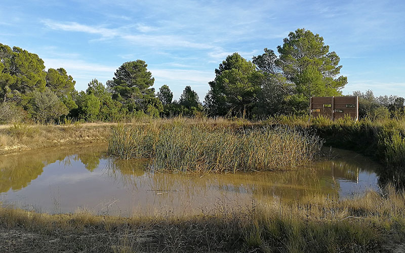 «Естественные пруды», маршрут по природным богатствам внутренней территории побережья