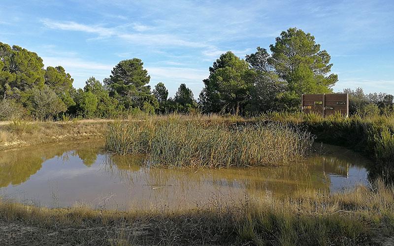 Les étangs naturels